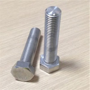 Stainless Steel 316 Anchor Screws and Fasteners pictures & photos