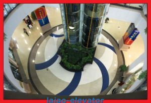 Square Shape Panoramic Elevator Lift pictures & photos