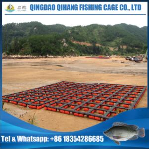 HDPE Lake Victoria Freshwater Cage Culture Fish Farm pictures & photos