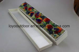 Preserved Natural Roses Handmade Flower Mother, S Day Gift pictures & photos