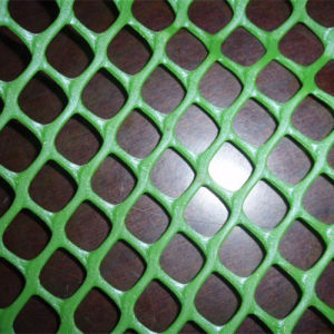 China Expert Manufacturer of Plastic Wire Mesh pictures & photos