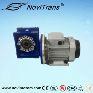0.75kw AC Flexible Motor with Decelerator (YFM-80C/D) pictures & photos