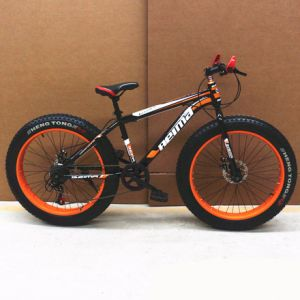 Good Fat Snow Bike From Made in China (ly-a-118) pictures & photos