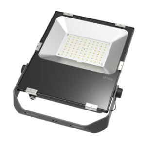 2017 Professional Design Driverless High Power 80W LED Flood Light pictures & photos