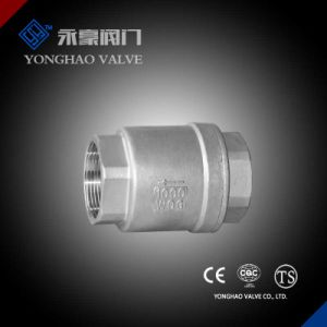 Spring Check Valve pictures & photos