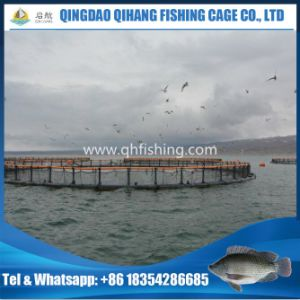 Floating Pipe Sea Fish Farming Cage Hot Sale pictures & photos