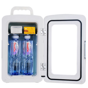 Portable Mini Fridge Cw-10L, 10liter DC12V, AC100-240V for Cooling and Warming Application pictures & photos
