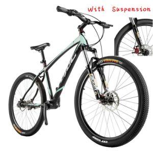 Latest Bicycle Model and Prices 26 Mountain Bike Downhill Shaft Drive Bicicletas Free Shipping pictures & photos