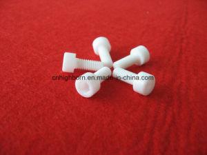 Fine Ceramics Zro2 Zirconia Ceramic Screw pictures & photos