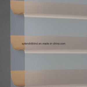 Roller Zebra Blinds Fabrics (SGD-R-3013) pictures & photos