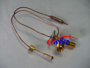 Auto AC Evaporator Expansion Valve, Double Tail, P021065140 pictures & photos