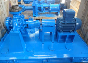 China Chemical Water Process Pump for Corrosive Solutions pictures & photos