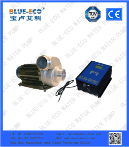 Seawater Application and Water Usage Single-Stage Submersible Motor Pump
