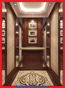 630kgs Home Elevator Passenger Lift Hot Sale pictures & photos