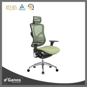 Jns Direct Selling New Design Manager Mesh Chair pictures & photos