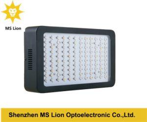High Power 360W Grow LED Lamp Full Spectrum 120*3W