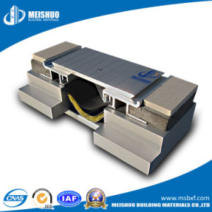 Architectural Heavy Duty Aluminum Expansion Joint for Floor pictures & photos