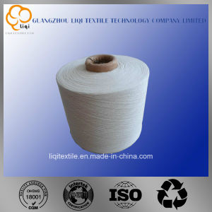 Ring Spun 100% Polyester Filament Yarn Fabric Textile Sewng Use pictures & photos