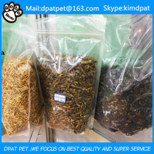 High Nutrition Dried Mealworms for Poultry Feed in Tub pictures & photos