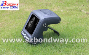 Pregnancy Scanning Machine for Veterinary pictures & photos
