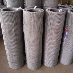 Woven Wire Mesh/Crimped Wire Mesh pictures & photos