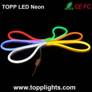 Flexible Slim LED Neon Flex 12V 24V Light pictures & photos