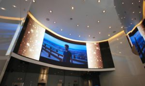 Indoor Soft Various Shape Flexible LED Display pictures & photos