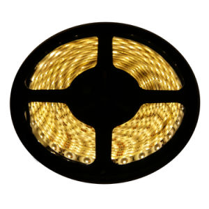 IP65 Warm White 5050 Flexible LED Strip for Home Decoration pictures & photos