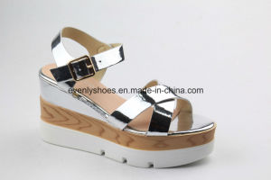 New Fashion Sexy Platfrom Sandal Lady Shoes for Summer pictures & photos