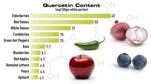 95%Quercetin for Food Supplements and Apis pictures & photos