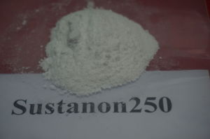 100% Pass Csutoms Sustanon250 Testosterone Blend pictures & photos