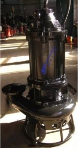 Submersible Slurry Pump pictures & photos