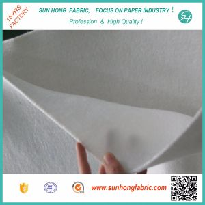 Paper Machine/ Paper Making Press Felt pictures & photos