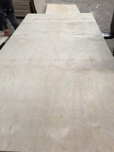 18mm BB/CC Grade E1 Glue Commercial Plywood for Decoration pictures & photos