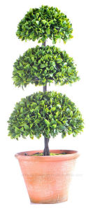 Varies Shapes of Artificial Milan Leaves Ball in Paper Mache Pot for Indoor/Outdoor Decoration pictures & photos