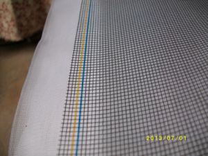 Dustproof Insect Screen Netting Used for Window and Doors, 18X16, 120G/M2 pictures & photos