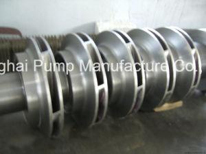 Power Plant Condensate Pump pictures & photos