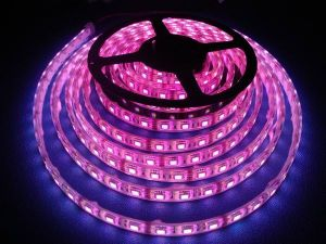 LED Ribbon Light (IP68 Waterproof) (SW-F5060T30-WW-WF4) pictures & photos