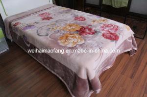 Raschel Printing Mink Polyester Blanket (MQ-LAPB001) pictures & photos