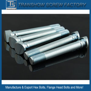 Hex Bolts, Flange Bolts, Round Head Bolts, Special Head Bolts pictures & photos