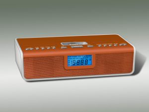 Radio Docking Station (W-IP325)