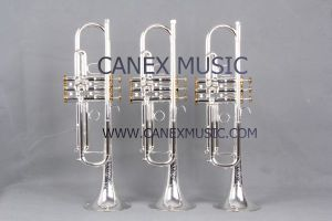 Bb Key  High Grade Trumpet TR-800S pictures & photos