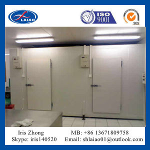 Freezer Room/Blast Freezer for Meat/ Poultry / Fish /Seafood/Squid/ Beef pictures & photos