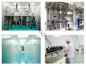 Factory Outlets Hyaluronic Acid Sodium Hyaluronate 5000-300W Molecular Weight pictures & photos