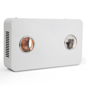 Full Spectrum 300W LED Grow Light for Indoor Plants Veg and Bloom Indoor Plant pictures & photos