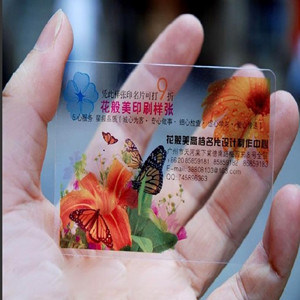 Cool Frosted Transparent PVC Cards