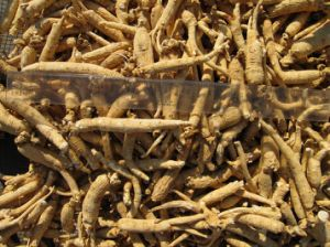 Panax Ginseng Extract-Ginsenoside (20%-80%)