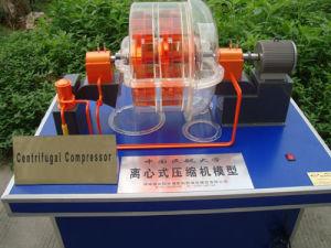 Educational Motor Generator Compressor and Pump Model, Demonstrational Model, Teaching Utensil