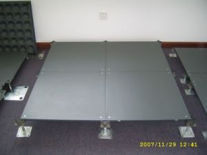 Bare Panel Access Floor