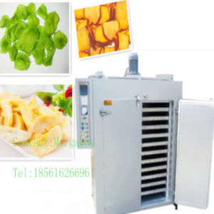 Coriander Drying Machine / Industrial Vegetable Drying Machine / Fruit Dehydrator Machine pictures & photos
